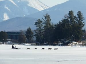 Dog sledding on Mirror Lake, Lake Placid